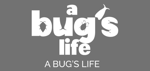 Free A Bug's Life Movie Font