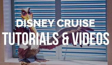 Disney Cruise Videos