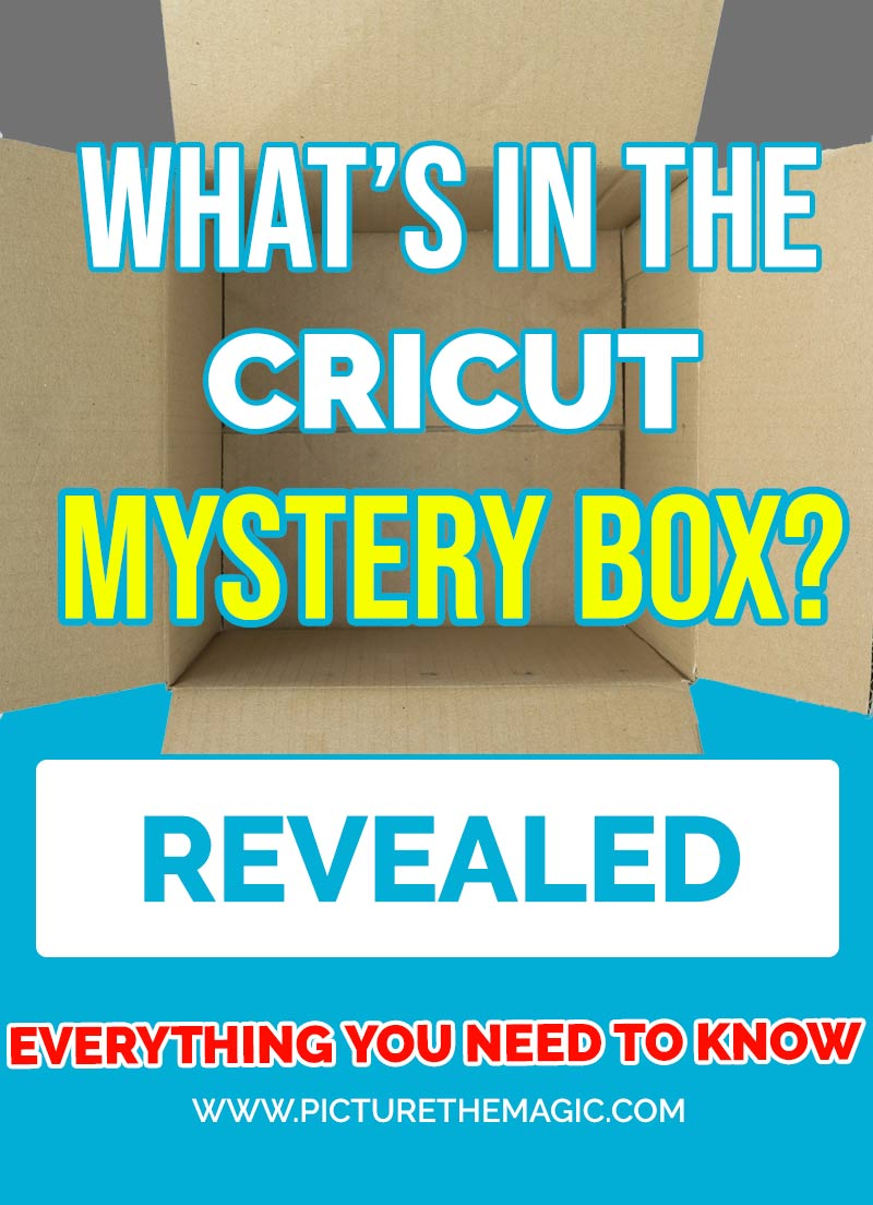 What's in the Cricut Mystery Box? REVEALED!