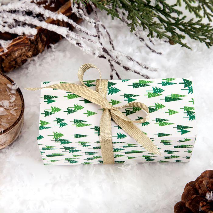 Cricut January Mystery Box Snowbird