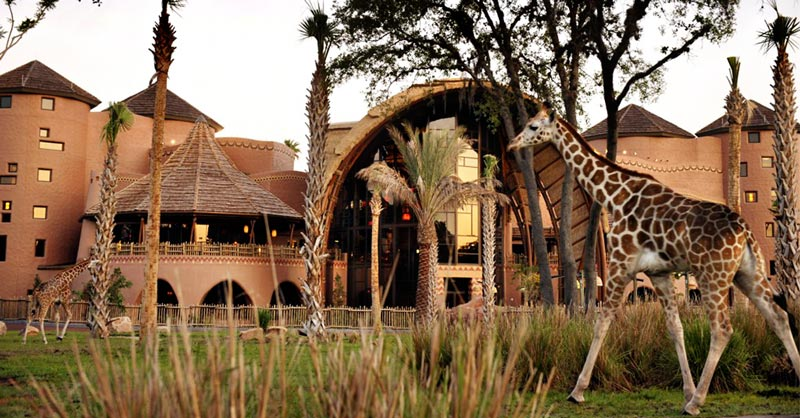 Giraffe walks in front of Animal Kingdom Lodge's Kidani Village