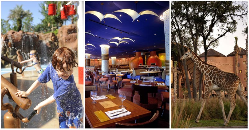 Collage of images of Animal Kingdom Lodge at Walt Disney World
