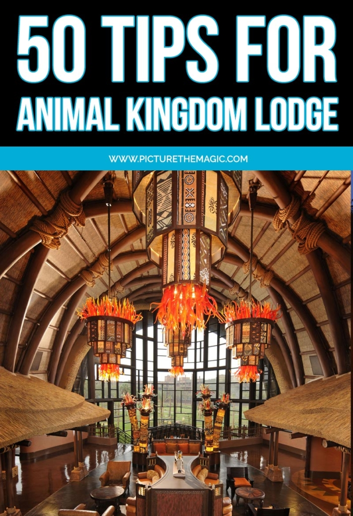 50+ Tips for Animal Kingdom Lodge