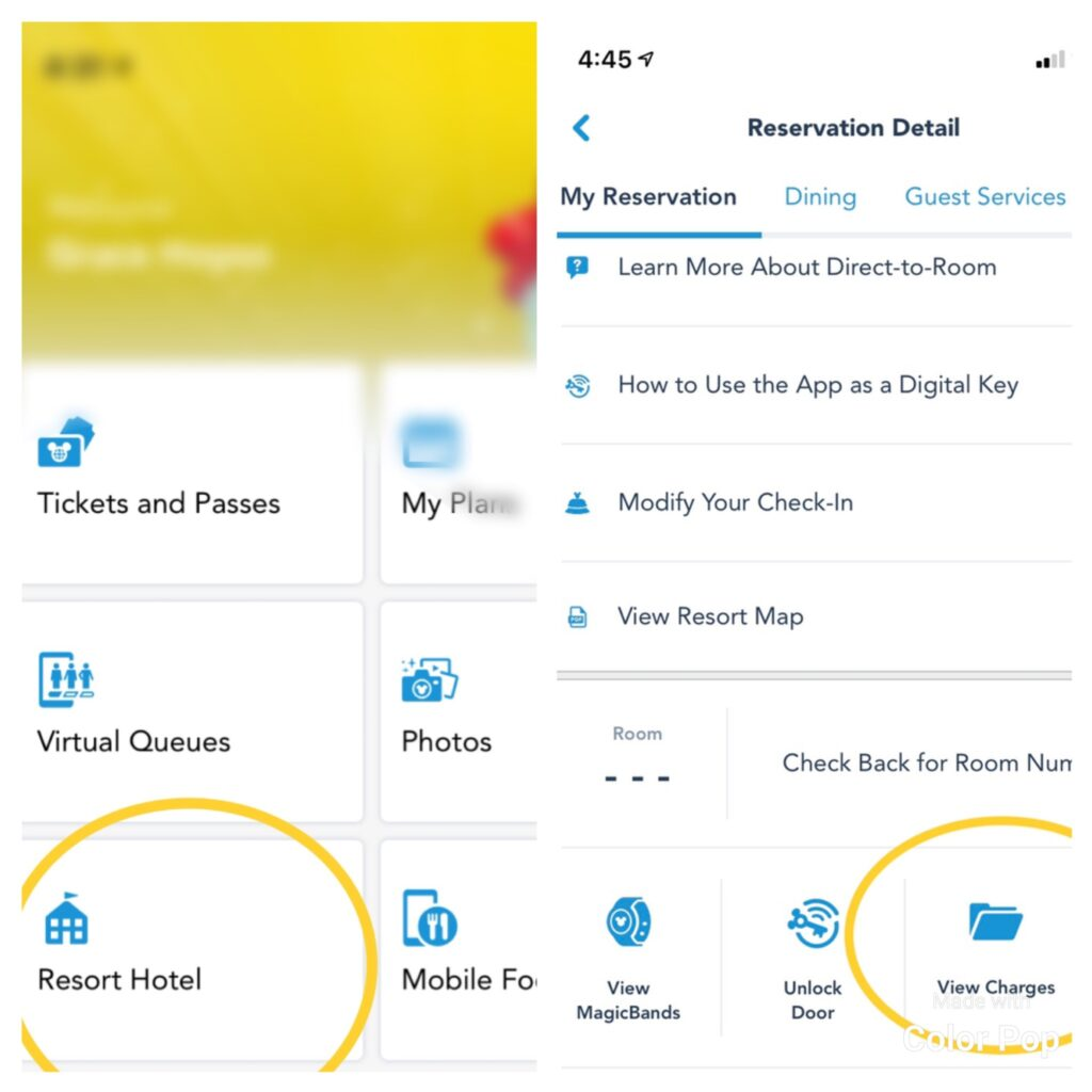 My Disney Experience App - viewing charges